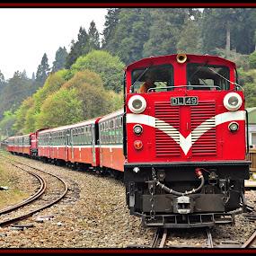 Alishan (Taiwan) by Vinay Tyagi - Transportation Trains