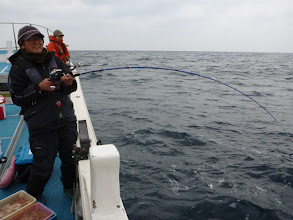 """Photo: 最後の最後に""""オオイシさん""""もヒーット! でしたが、切られました!  この時期でもサメが活発で釣りになりませんでした! ・・・困った。どうしよう。  真鯛は数匹ずつしかキャッチできませんでした!"""