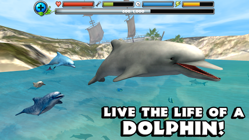 Dolphin Simulator - screenshot