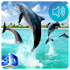 Dolphin Live Wallpaper Download for PC Windows 10/8/7