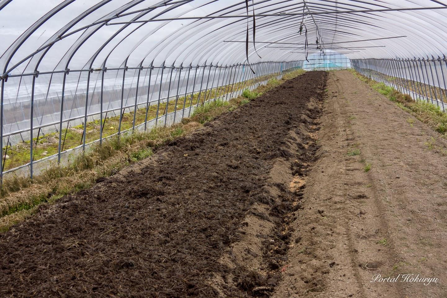 フカフカの土壌