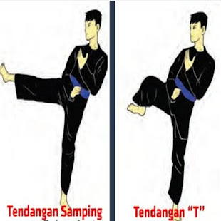 Download pencak silat technique For PC Windows and Mac apk screenshot 5