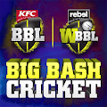 stor bash cricket APK