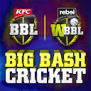 Big Bash Cricket 1 APK Download