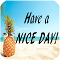 Have a Nice Day APK