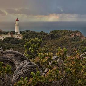 Cape Schanck by Ewan Arnolda - Landscapes Beaches ( sky, nature, australia, light house, landscape )