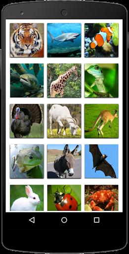Nama Binatang  screenshots 9