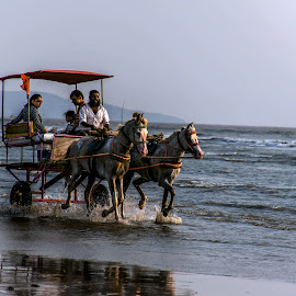 Galloping on the beach by Hariharan Venkatakrishnan - City,  Street & Park  Vistas