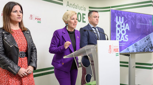 Los diputados del PSOE de Almería donan sus dietas al Carlos III