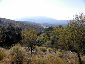 Photo: Laroles Valley Walk: Mairena - Jubar - Laroles (in distance) and Return