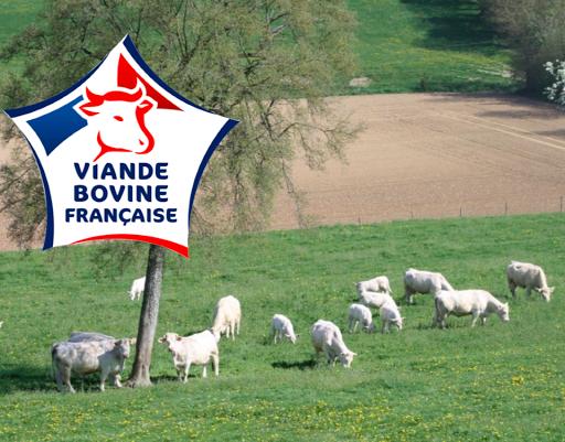 ferme de travailles viande charolaise française