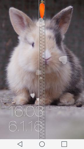 Cute Bunny Zipper Lock Screen