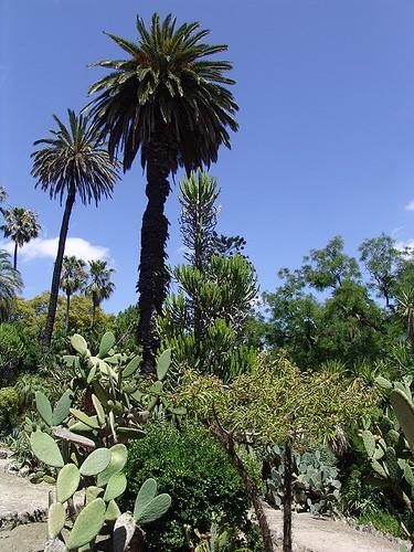 jardin botanique visite avis