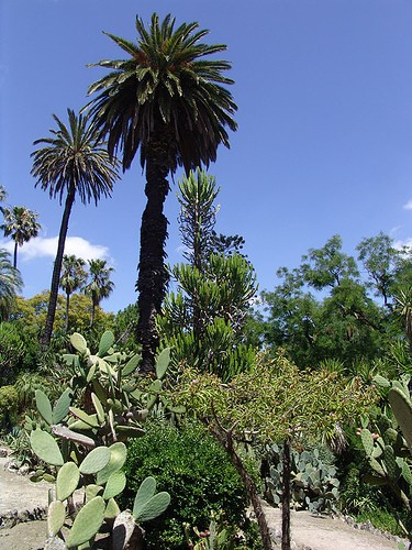 Photo Jardin botanique
