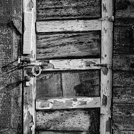 Door by Todd Reynolds - Black & White Buildings & Architecture