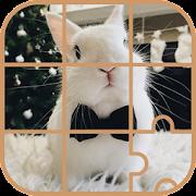 Bunny Puzzle -Kid Puzzle