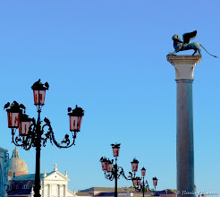 Photo: The birds and beasts of Venice