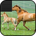 Picture Puzzle Block icon