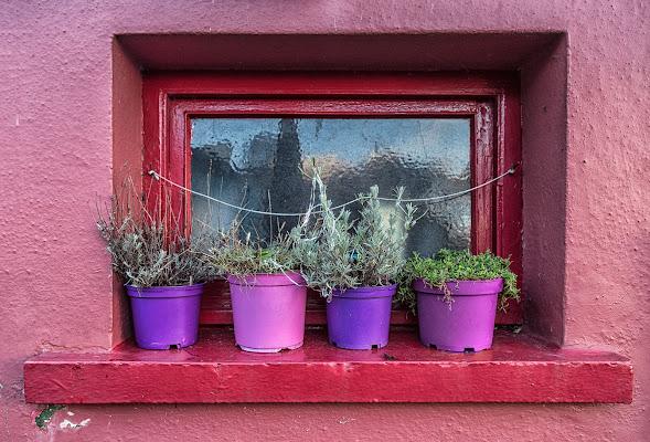 Una finestra... di prometeo