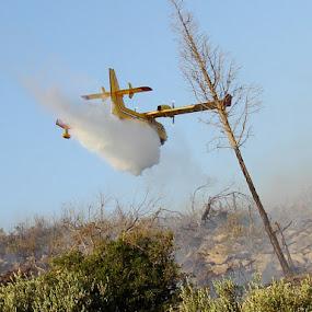 Firefight by Jaksa Kuzmicic - News & Events World Events ( plane, fire, island )