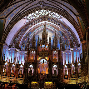Catholic Altar in Blue by Big Pikey - Buildings & Architecture Places of Worship ( internal architecture, church altar, catholic altar, basilica notre dame, blue altar, available light architecture,  )