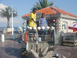 Photo: Miles & Jihad feed dead fish to the pelicans @ the Pier
