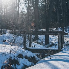 The Bridge by Sam Reed - Landscapes Mountains & Hills ( cuyahoga falls, nature, snow, winter, cold, bridge, ohio, park )