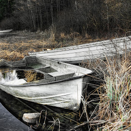 the old boat by Dirk Rosin - Transportation Boats