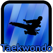 Taekwondo Kicks Videos - Offline
