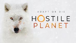 Hostile Planet thumbnail