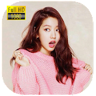 Park Shin Hye Wallpapers HD icon