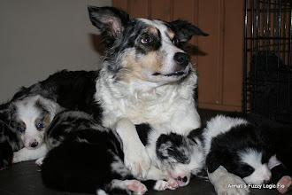 Photo: Oma Britt met haar kleinkinderen.