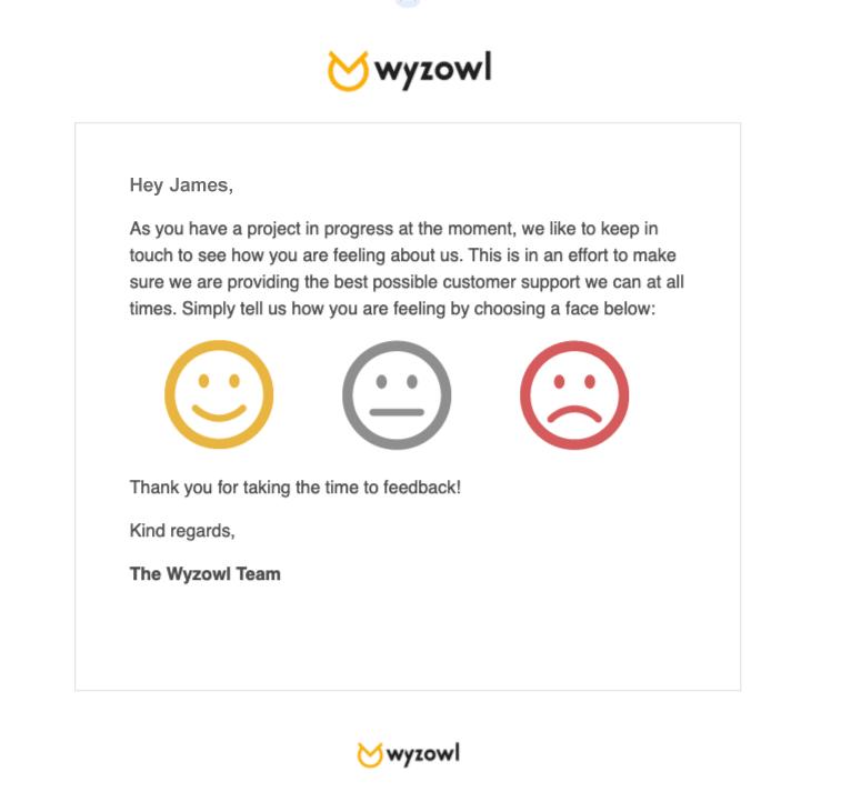 Wyzowl feedback