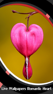 Live Wallpapers Romantic Heart - náhled