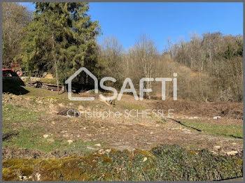 terrain à Saint-Dizier-l'Evêque (90)