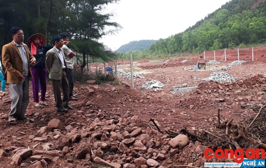 Hàng chục cây phi lao thuộc diện tích rừng phòng hộ đã bị chặt phá để xây dựng trang trại nuôi tôm