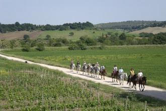 Photo: Tutti a cavallo !Girasole saturnia agriturismo