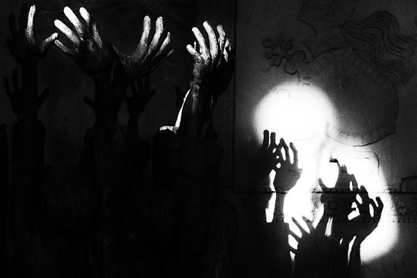 Alla ricerca della luce di NinoZx21