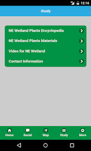 NE Wetland- screenshot thumbnail