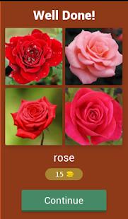 Flower names Quiz - náhled