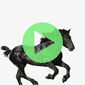Music Old Town Road - Offline - Free icon
