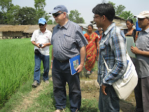Photo: EU Ambassador Alexander Spachis observing SRI field at Lalbojhi, Kailali, Nepal [Photo by Ram B. Khadka, May 2011]