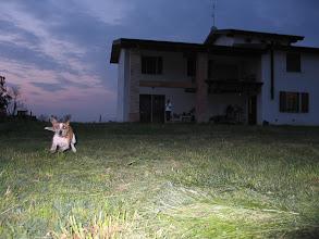 Photo: ... ja, manchmal werde sogar ich am Abend freudig in einem trauten Heim erwartet!