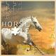 پازل تصاویر زیبای اسب ها Download on Windows