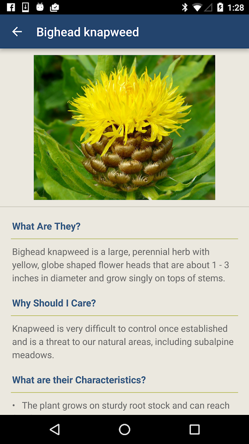 Washington Invasives- screenshot