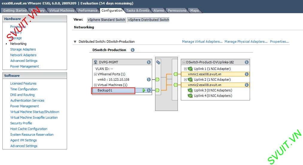 create vSphere Distributed port group (7)