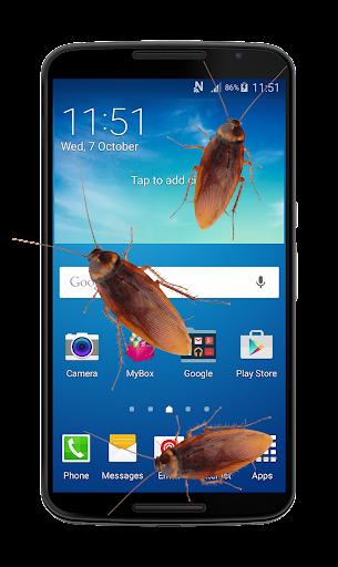 在手机蟑螂