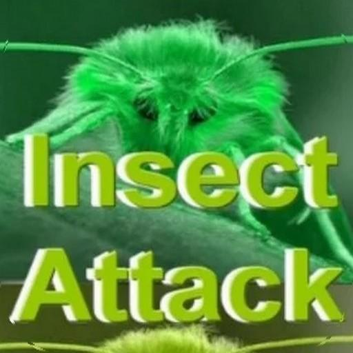 Insects Invasion