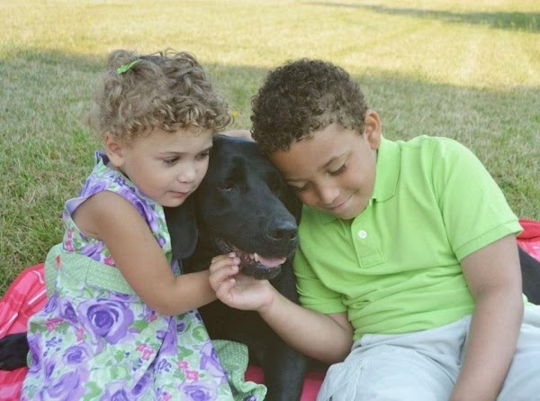 Always good with the kids ~   Jassy & DJ ..  now in their forever home ..