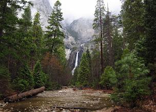 Photo: Lower Yosemite Falls, March. SX.. #2296     Rain-saturated scenes